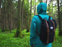 hiking 3rlt