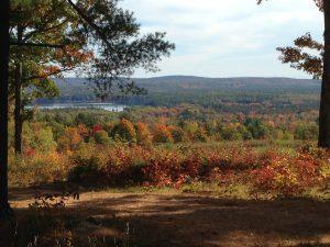 gh-fall-foliage