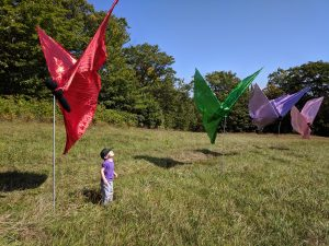 small child with butterfly flags in a fied